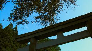 鈴虫寺 2007 復縁